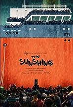 The Sunshine