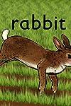 Rabbit (2005)