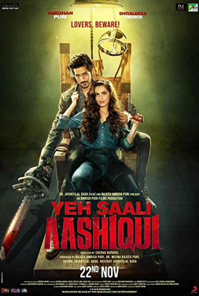Yeh Saali Aashiqui 2019 HDRip 300MB 480p Full Hindi Movie Download