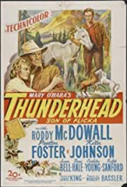 Thunderhead: Son of Flicka Poster