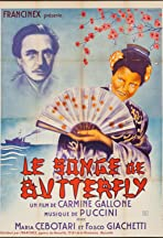 The Dream of Butterfly
