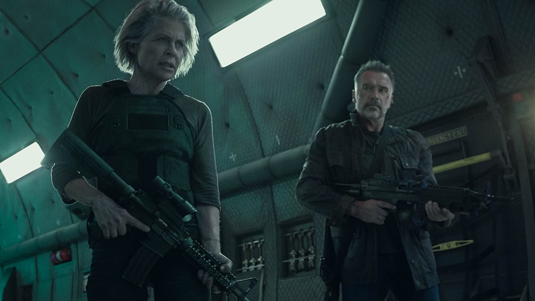 Linda Hamilton and Arnold Schwarzenegger in Terminator: Dark Fate (2019)