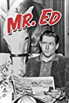 Mister Ed Star Alan Young Dead at 96