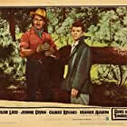 Frankie Avalon and Gilbert Roland in Guns of the Timberland (1960)