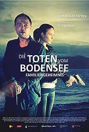 Familiengeheimnis Poster