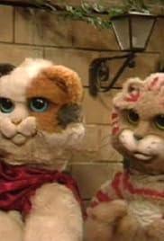 Pacha et les chats Poster