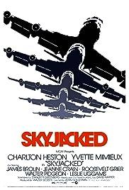 Skyjacked(1972) Poster - Movie Forum, Cast, Reviews