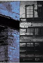 Die Wörter hören das Licht