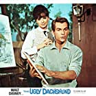 Dean Jones and Suzanne Pleshette in The Ugly Dachshund (1966)