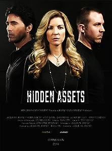 Movie free online Hidden Assets by Matt Daneri [DVDRip]