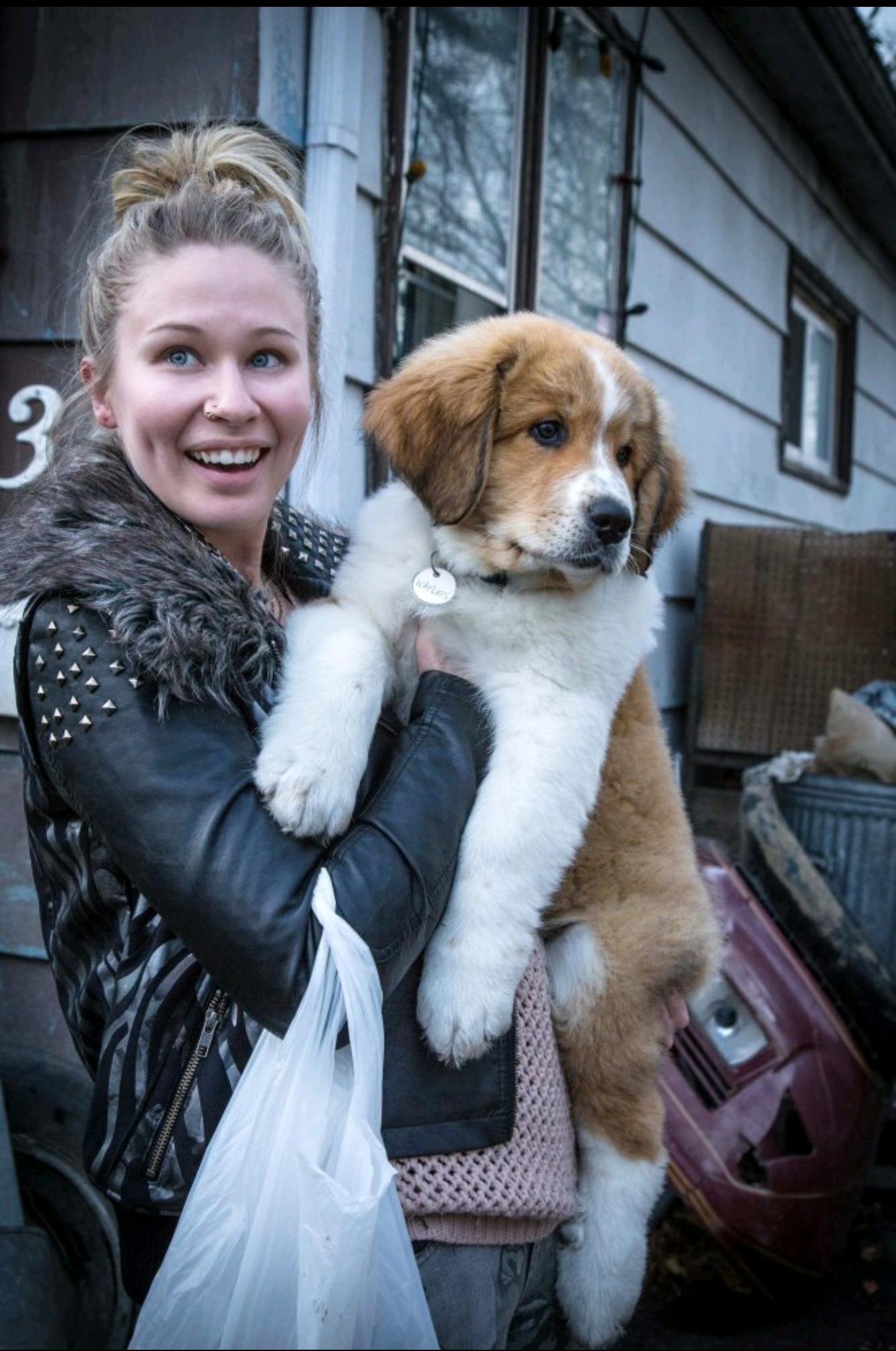 Nicole LaPlaca and Josh Gad in A Dog's Purpose (2017)