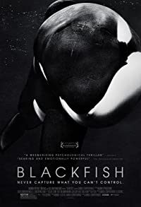 Primary photo for Blackfish