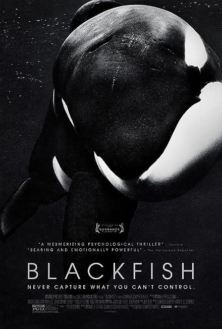 Film: Blackfish