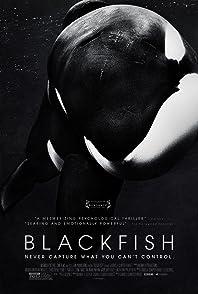 Blackfishแบล็คฟิช วาฬเพชฌฆาต