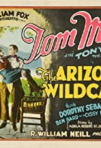 The Arizona Wildcat