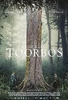 Toorbos
