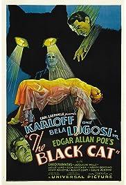 Download The Black Cat (1934) Movie