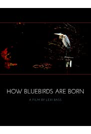 How Bluebirds Are Born
