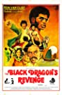 The Black Dragon Revenges the Death of Bruce Lee (1975) Poster