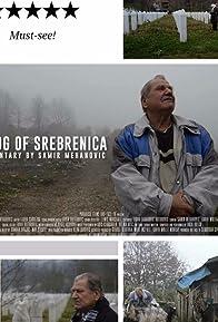 Primary photo for The Fog of Srebrenica