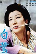 Shirasagi