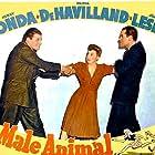 Olivia de Havilland, Henry Fonda, and Jack Carson in The Male Animal (1942)