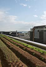 How One Rooftop Farm Could Make Your City Better