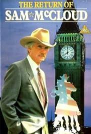 The Return of Sam McCloud Poster
