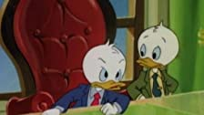 Yuppy Ducks