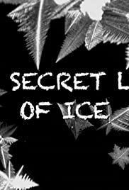 The Secret Life of Ice Poster