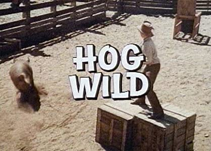 Best sites to download latest english movies Hog Wild by [480x272]
