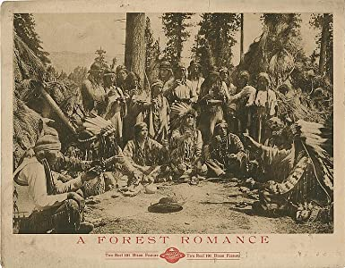 Movie downloadable websites A Forest Romance USA [720x480]
