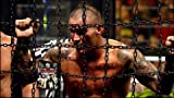 WWE: Elimination Chamber: 2014