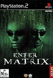 Enter the Matrix Poster
