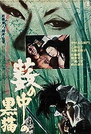 Black Cat(1968) Poster - Movie Forum, Cast, Reviews