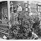 Lee Morgan and Bill Van Sickel in Dangers of the Canadian Mounted (1948)