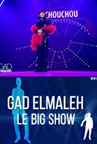 Primary photo for Gad Elmaleh: Le big show