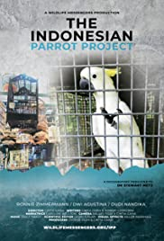 The Indonesian Parrot Project Poster