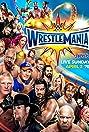 WrestleMania 33 (2017) Poster