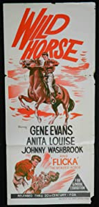 English movies downloads for free The Wild Horse [640x360]
