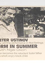 A Storm in Summer (1970) Poster - Movie Forum, Cast, Reviews