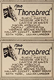 The Thoroughbred Poster