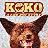Still Koko: A Red Dog Story