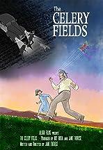 The Celery Fields