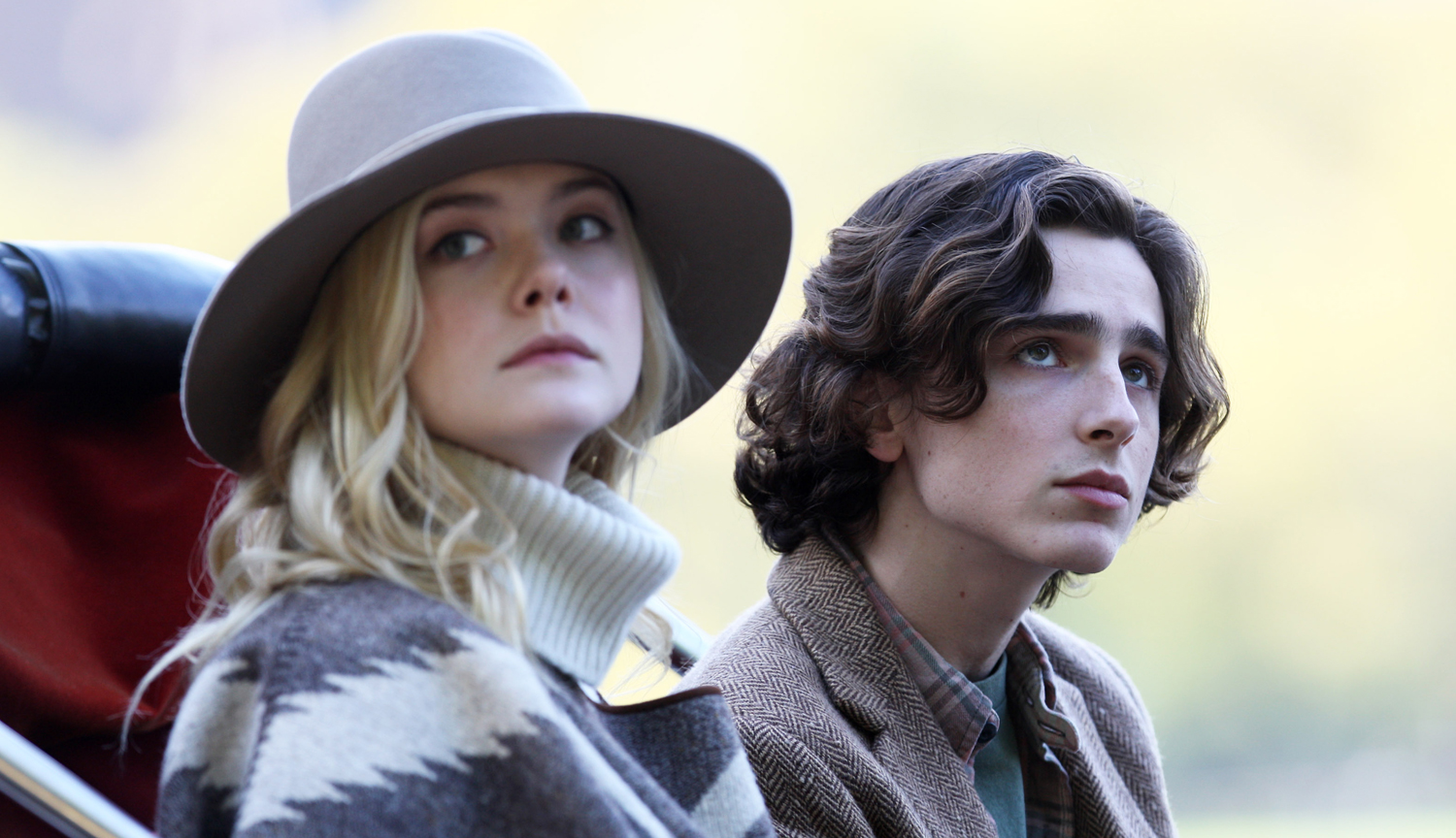 Elle Fanning and Timothée Chalamet in A Rainy Day in New York (2019)