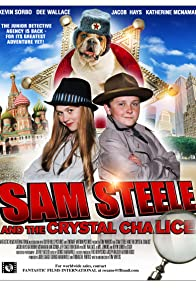Primary photo for Sam Steele and the Crystal Chalice