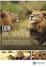 Lion Brotherhood