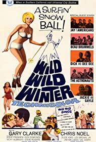 Gary Clarke, Chris Noel, The Astronauts, Jay and the Americans, The Beau Brummels, Dick and Dee Dee, and Jackie and Gayle in Wild Wild Winter (1966)