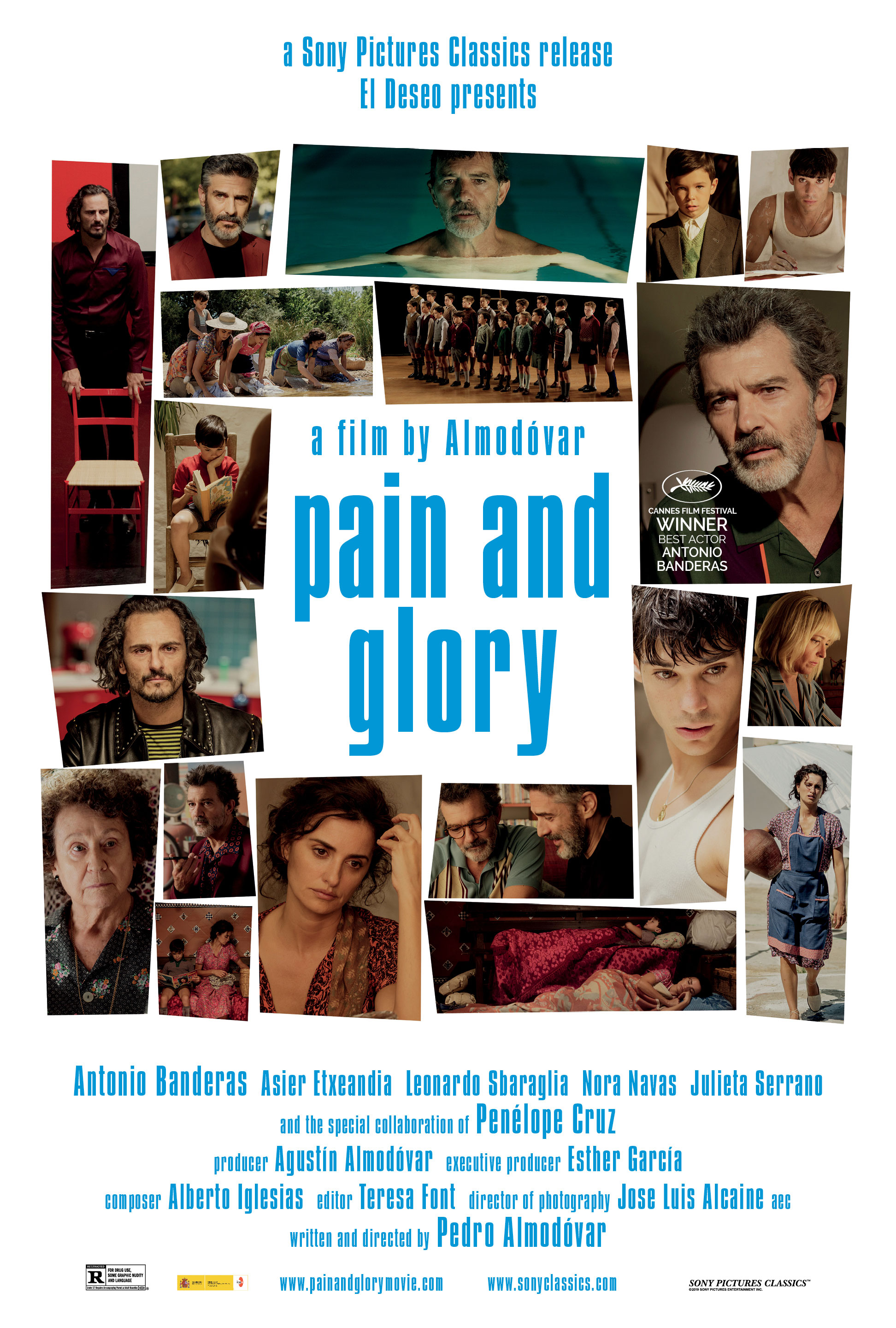 Image result for pain and glory movie poster