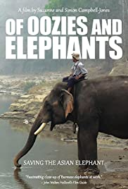 Of Oozies and Elephants Poster